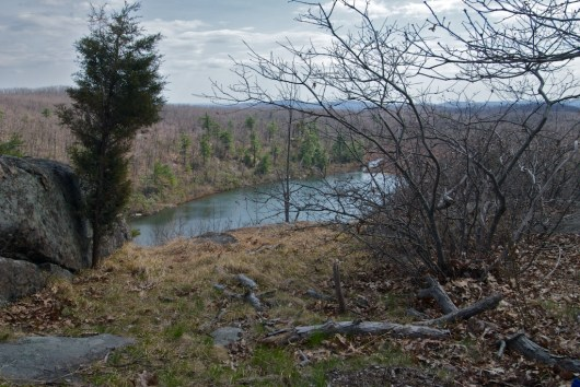2009-04-18_18-29-30