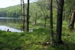 2009-05-24_15-22-05