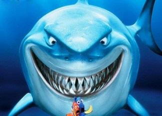 facts about sharks and amazing facts