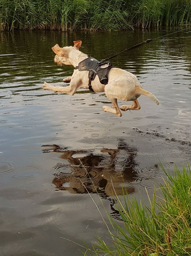 Isotta makes a dive!