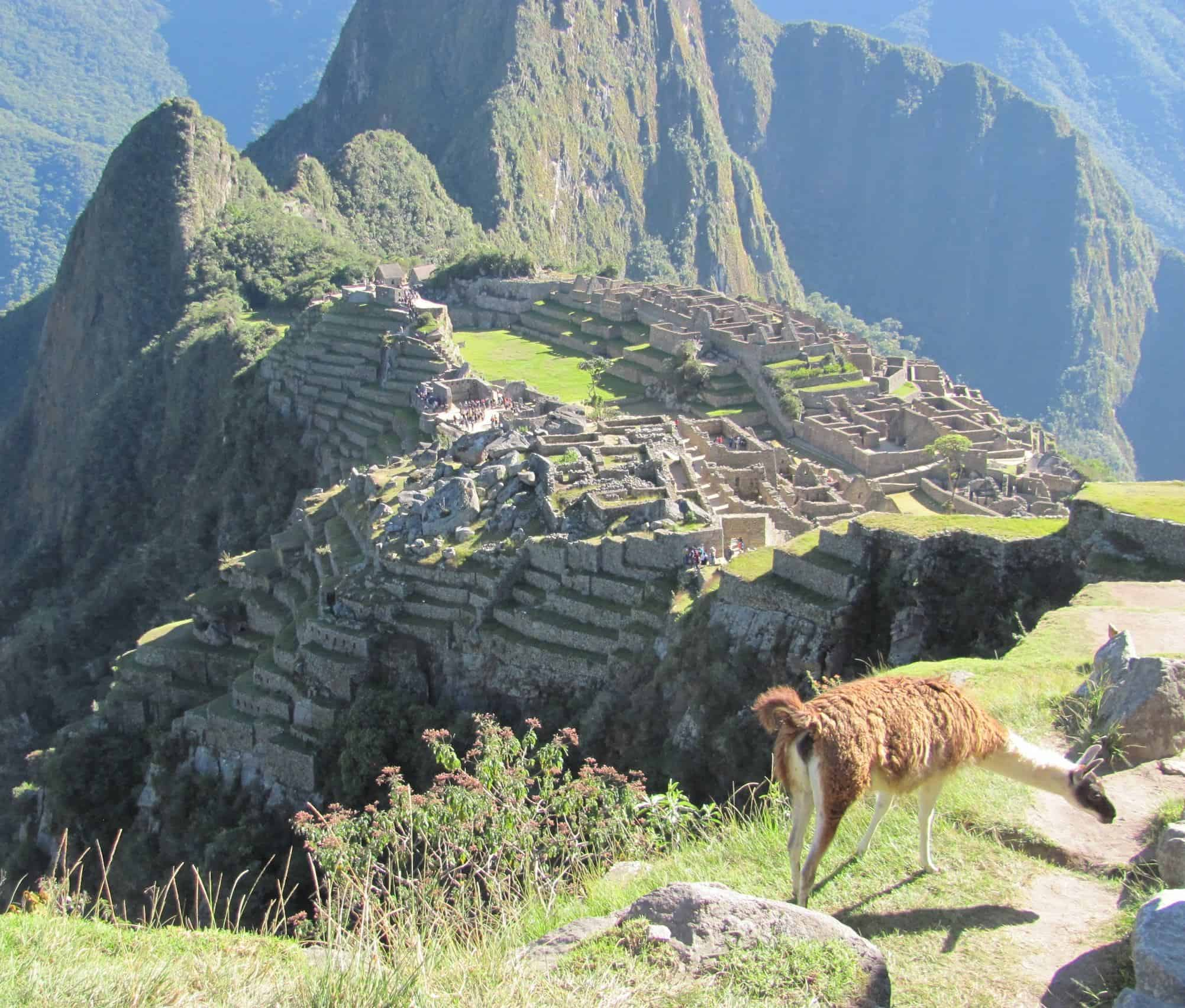 Visit Machu Picchu For 100