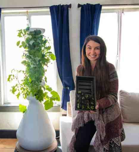 gardening with hydroponics