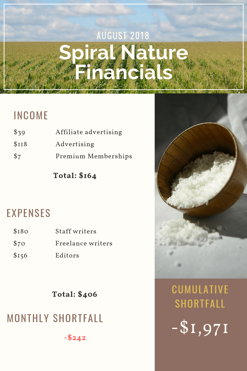August 2018 Spiral Nature Financials