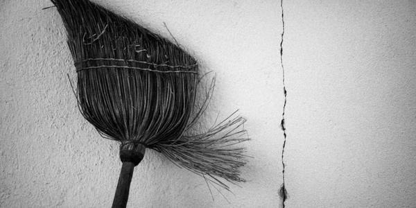 Broom by Rudolf Vlček (flickr)