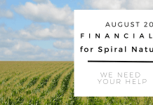 Financials for Spiral Nature August 2018