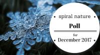 Spiral Nature Poll for December 2017