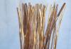 Yarrow stalks, photo by CharlieHuang