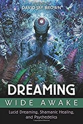 Dreaming Wide Awake, by David Jay Brown