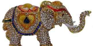 Elephant, Jackpot Jane