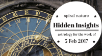 Hidden Insights: 5 February 2017