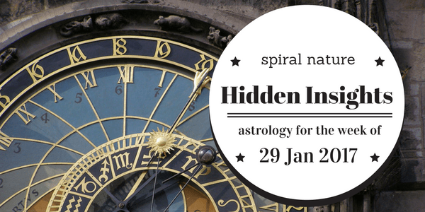 Hidden Insights: 29 January 2017