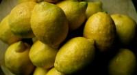 Lemons, photo by Trevor Leyenhorst