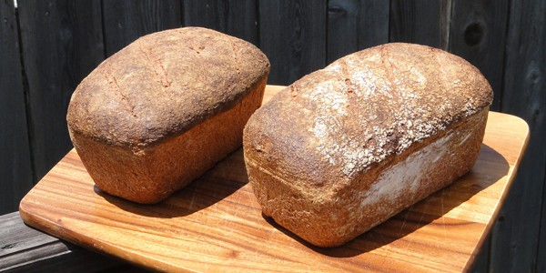 Whole wheat loaves, photo by Bart Everson