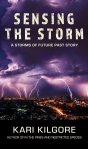 Sensing the Storm cover