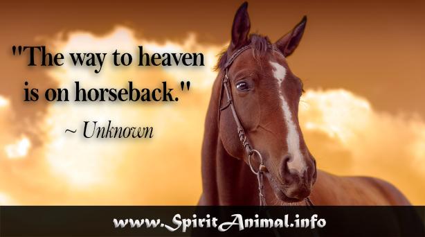 Horse Quotes - Spirit Animal Info