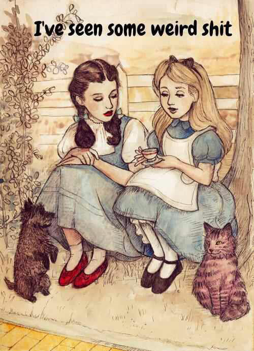 dorothy-alice-in-wonderland-ive-seen-some-weird-shit
