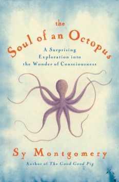 soulofanoctopus