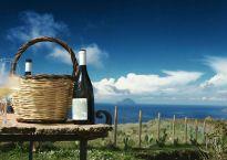 Dellarosa Wine