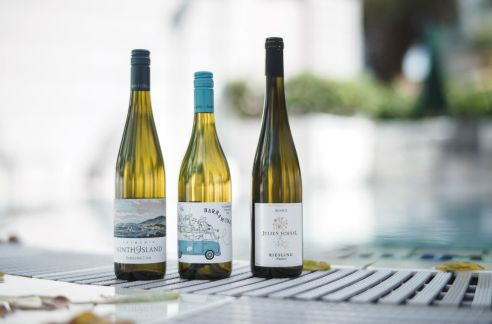 summer-friendly wines