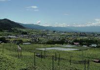 Japan Premium Wine Fair