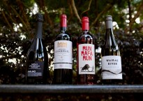 cold storage international wine fair 2020 wines