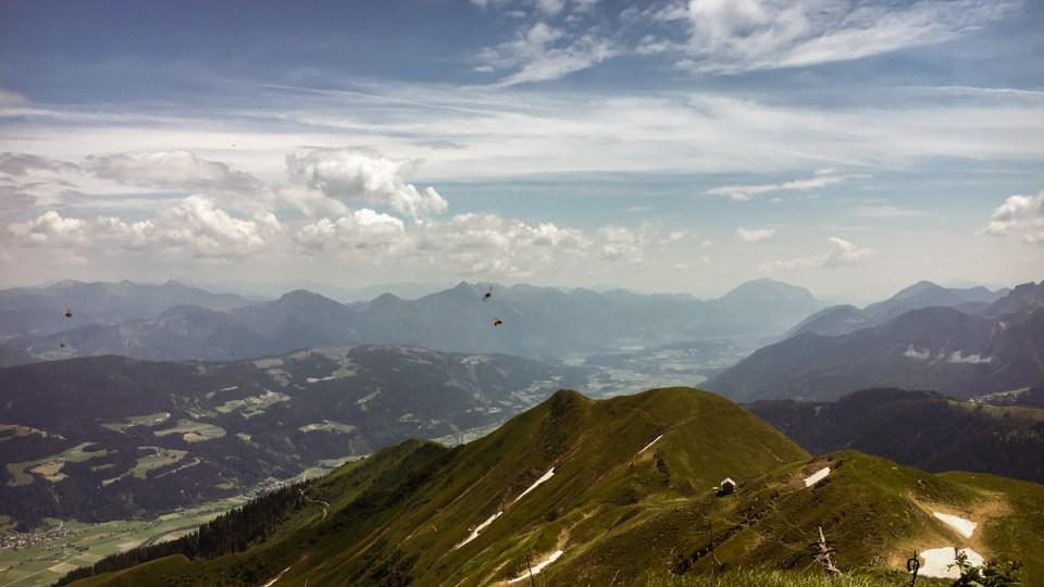 Der Blick ins Tal - mit Alpenhummeln