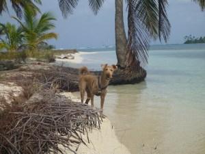 1-beach with Quinn