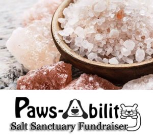 Paws-ability Fundraiser Salt Sanctuary Session @ Spiritquest | Ocean Isle Beach | North Carolina | United States