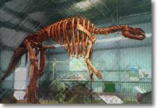Dinosaur tour at Hughenden