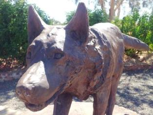 Red Dog Pilbara Tour
