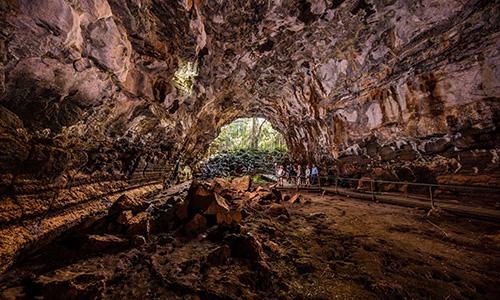 Undara Volcanic National Park Tour Cairns to Darwin