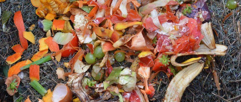 matavfall blir kompost