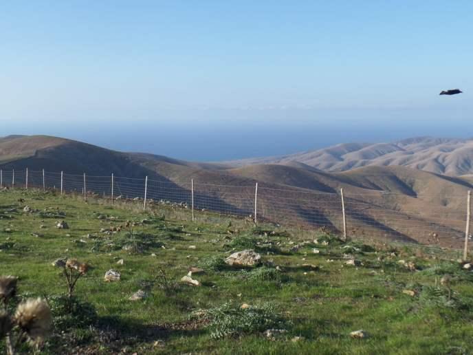 Uitzichtpunt op Fuerteventura, Canarische Eilanden, Spanje