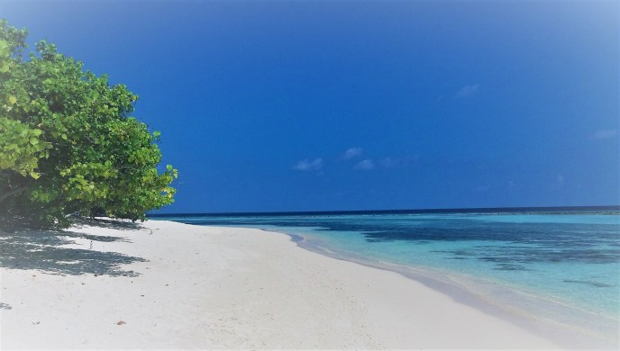 Rasdhoo the dream destination on the Maldives