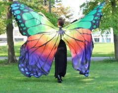 Butterfly Wings