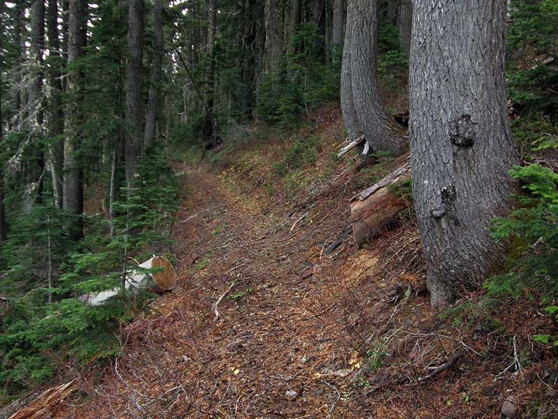 Northern Rho Ridge Trail