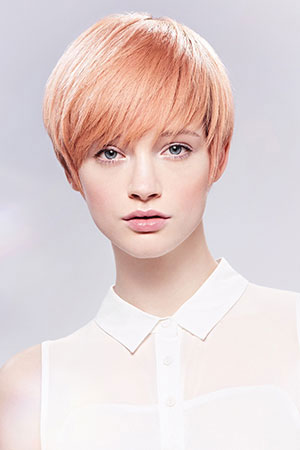haircut hairstyles in broomall