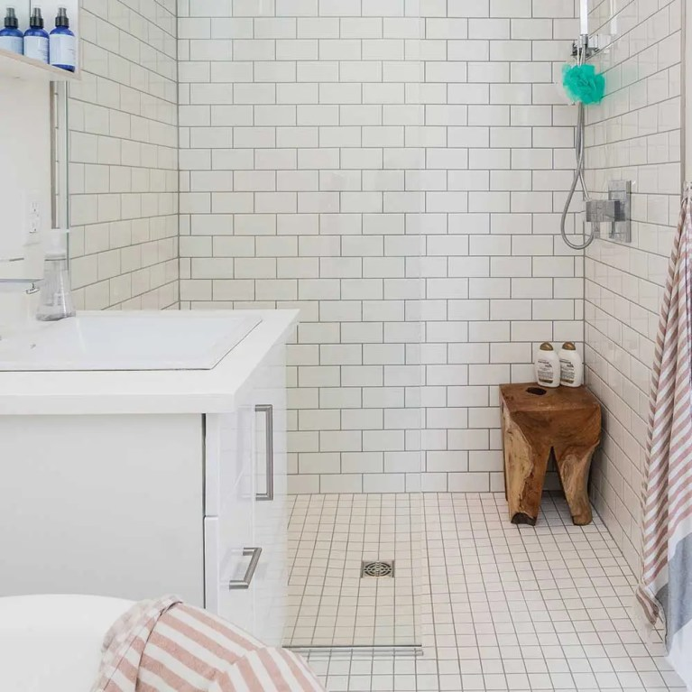 Wetrooms and Easy Access