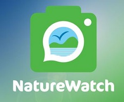 NatureWatch logo