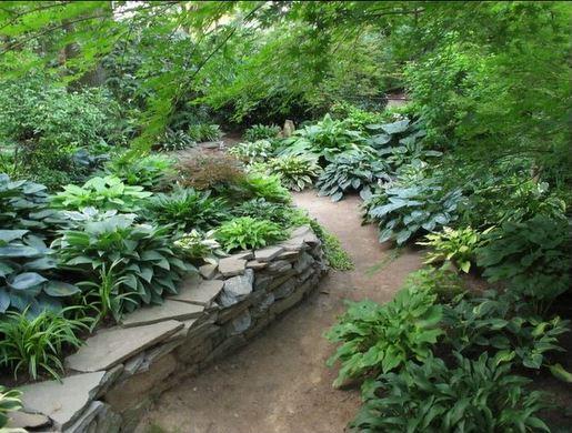 spectacular perennial beds part