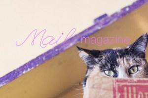 blog_123