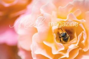 blog_130