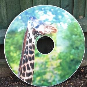 Giraffe SpokeGuards