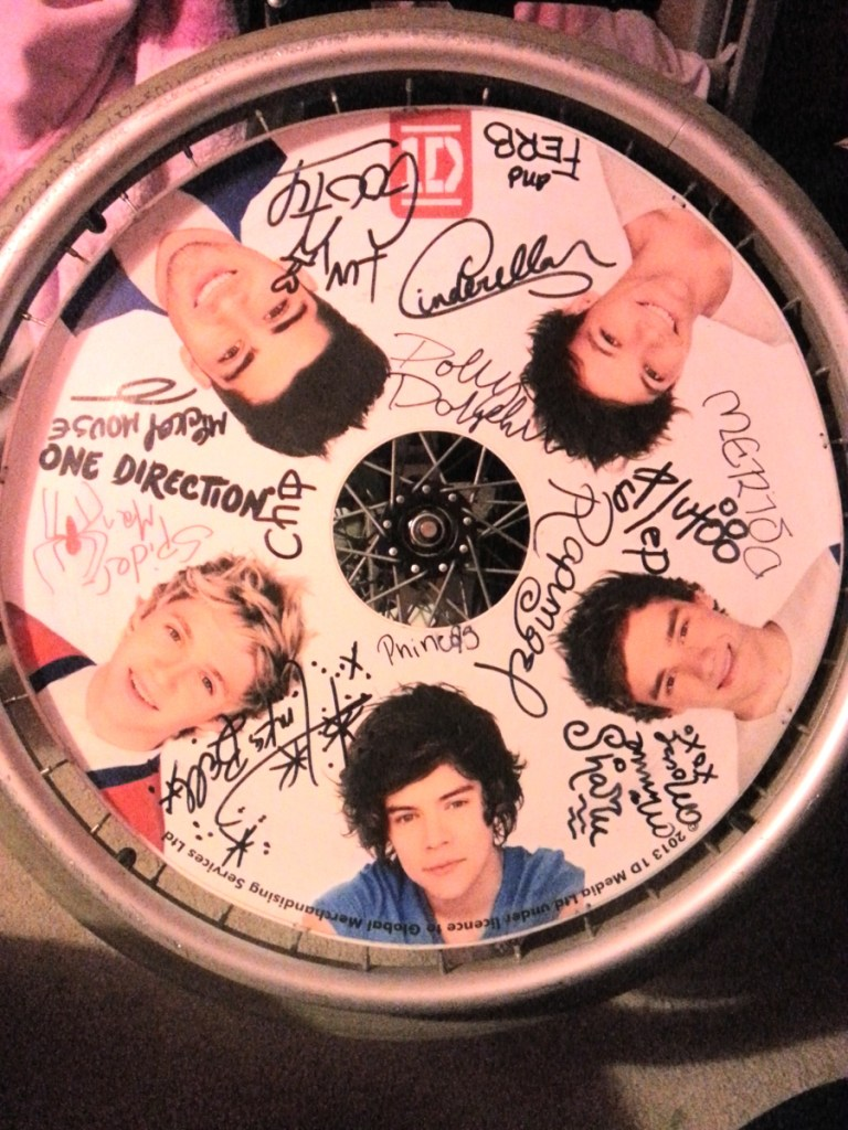 One Direction Wheelchair Wheel Covers SpokeGuards