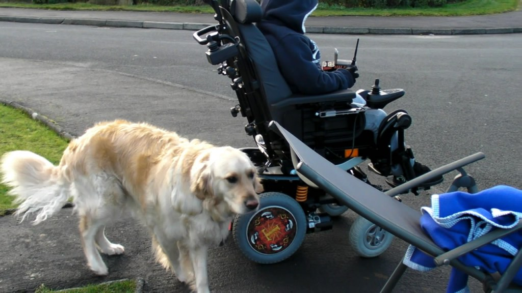 Powered Wheelchair SpokeGuards Electric Wheelchair wheel Covers
