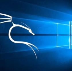 Kali Linux is available on WSL for penetration testers