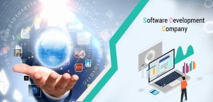 Importance of Software to enhance productivity & sales of Company