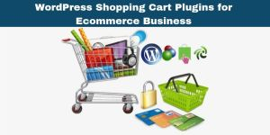6 Outstanding WordPress Shopping Cart Plugins for Ecommerce Business