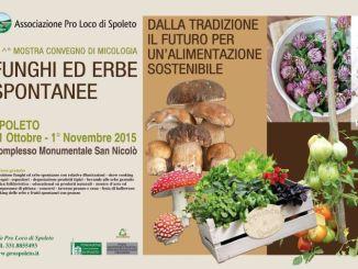 Mostra micologica, al via a Spoleto la 21edizione