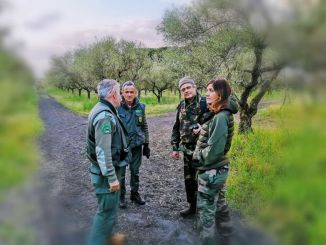 20 mila € di risarcimento, WWF Perugia, parte civile, li chiede ai cacciatori